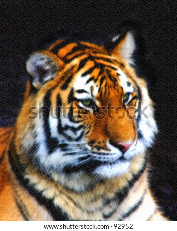 Tiger Art - stock photo