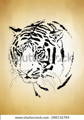 tiger head on old vintage brown paper, hand drawn tiger face - stock photo