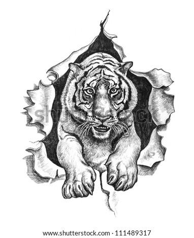 Tiger ripped metal. Pencil drawing illustration.
