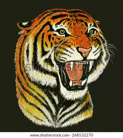 Tiger Roaring Drawing Side View - photo#36