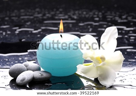 tiger's violet orchids and blue candle on water drops - stock photo