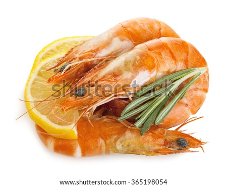 Tiger shrimps with lemon slice and rosemary. Prawns with lemon slice and rosemary isolated on a white background. Seafood. - stock photo