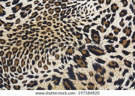 Tiger strip texture - stock photo