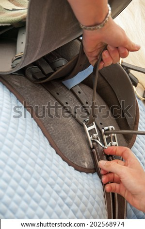 Tightening a girth on horse saddle - stock photo
