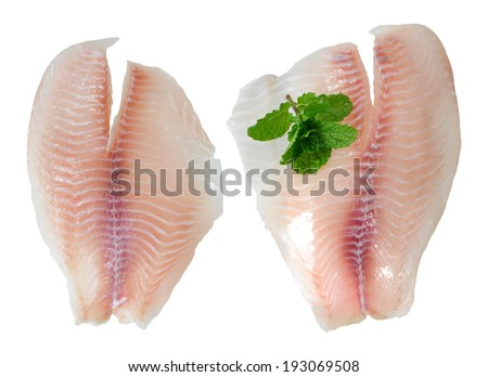 tilapia fillet fish and mint isolated on white background  - stock photo