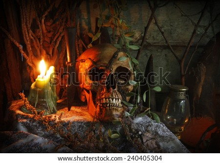 till life with skull human in haunted House.abandoned house. - stock photo