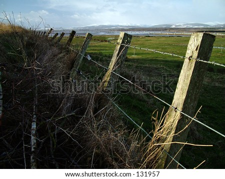Tilted Fence - stock photo