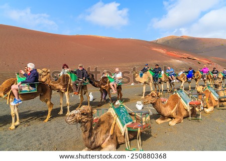 TIMANFAYA NATIONAL PARK, LANZAROTE ISLAND - JAN 14, 2015: Caravan of camels with tourists in Timanfaya National Park. Camel trek is popular attraction on Lanzarote island. - stock photo