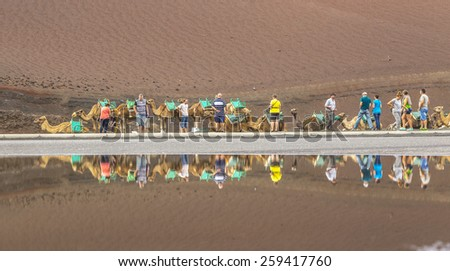 TIMANFAYA NATIONAL PARK, LANZAROTE ISLAND - NOV 12, 2014: Caravan of camels with tourists in Timanfaya National Park. Camel trek is popular attraction on Lanzarote island. - stock photo
