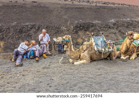 TIMANFAYA NATIONAL PARK, LANZAROTE, SPAIN - NOV 12, 2014: Camel riders wait for tourists being guided by local people through the famous Timanfaya National Park in Lanzarote, Spain. - stock photo
