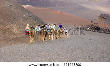 TIMANFAYA - NOV 13 : Unidentified tourists taking a camel ride on November 13, 2013 in Timanfaya National Park, Lanzarote island, Spain. The parkland is entirely made up of volcanic soil.