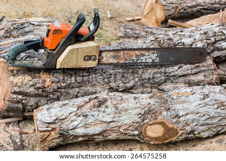 Timber cutting wood with  old saw, chainsaw and blade. - stock photo
