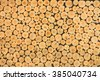 timber for background. - stock photo