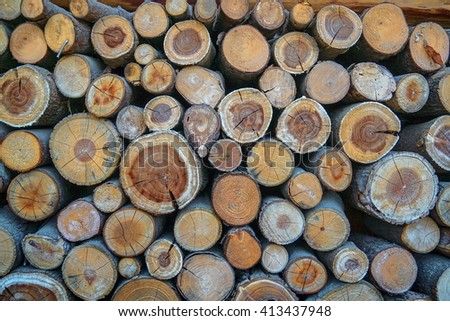 Timber for the firewood. - stock photo