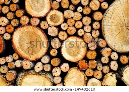 Timber log stack for textural background.  - stock photo