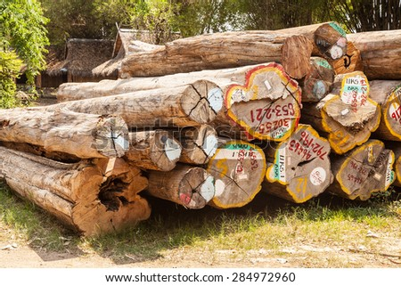 timber logs after restoration works in a forest - stock photo
