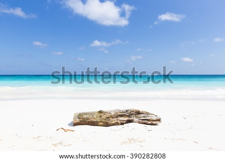 Timber on the beach. Beach during the day and clear and hot. - stock photo