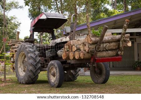 Timber trucks - stock photo