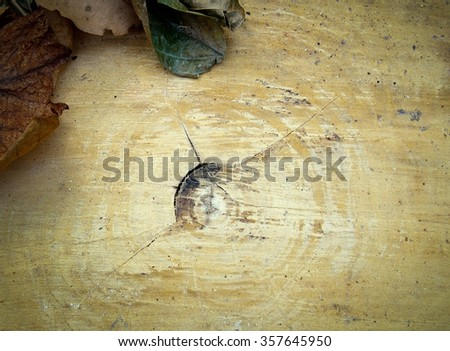 Timber with dry leaves placed.