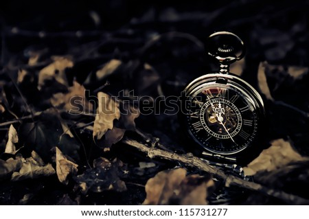 Time - Vintage Pocket Watch with Fall Leaves