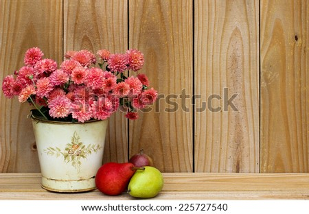 Tin pot of pink flowers - mums - by pears and rustic wood sign - stock photo