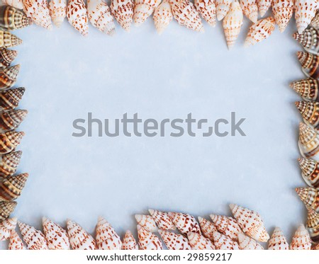 tiny conch shells framing textured blue paper