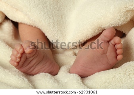 Tiny feet of a newborn baby