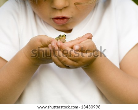 Tiny frog on hands - stock photo
