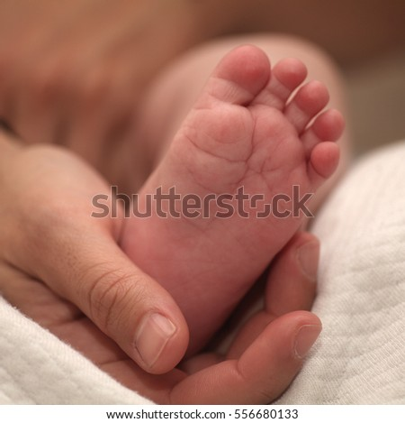 Tiny newborn baby foot in female hands, close-up. Cute little kid leg. Maternity, love, care, new life concept