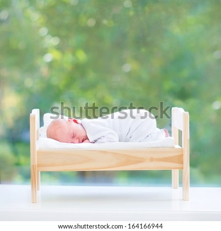 Tiny newborn baby sleeping in a toy bed next to a big window into the garden with green summer trees - stock photo