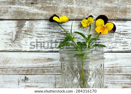 Tiny pansy flowers in clear glass jelly jar against rustic white wood background.
