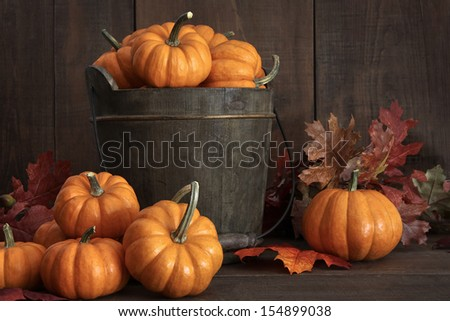 Tiny pumpkins in wooden bucket on table - stock photo