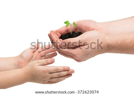 Tiny sprout of morning glory in man's hands. The man gives it to his baby. Earth day. - stock photo