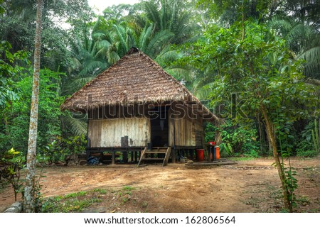 Tipic house in the amazonas jungle - stock photo