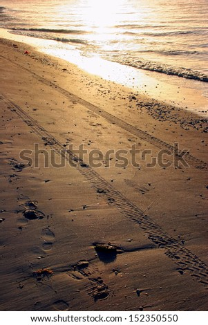 Tire Tracks in Sand on Sanibel Florida Beach Sunrise - stock photo