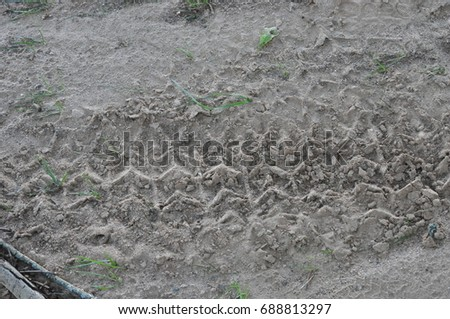 Tire tread tracks in dirt