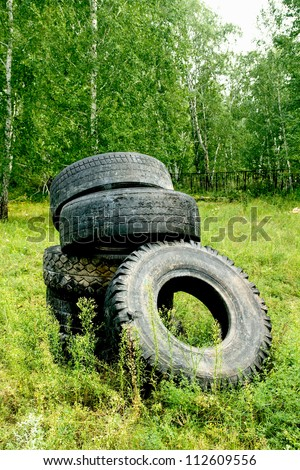 tires from vehicles in the forest