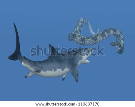 Titanoboa and Megalodon Computer generated 3D illustration - stock photo