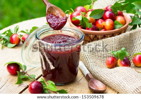 Tkemali Georgian sauce with cherry plum - stock photo