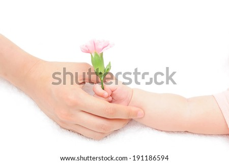 To handsel carnation for Mother's Day