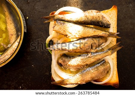Toasted bread with sardines on the table with a ray of sunshine - stock photo