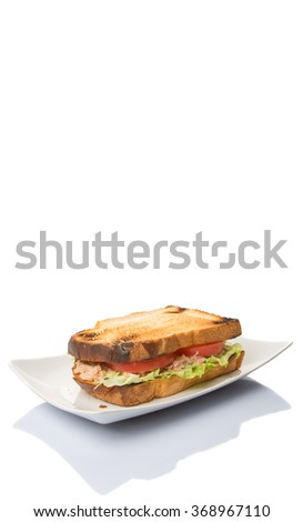 Toasted tuna sandwich with salad and tomato slices over white background