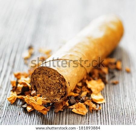 Tobacco and cigar. Shallow depth of field.  - stock photo