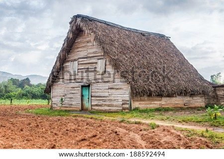 Tobacco curing barn at the Vinales valley in Cuba - stock photo