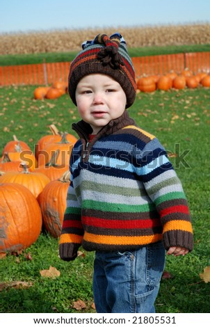 toddler at pumpkin farm