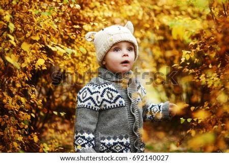 toddler boy in the golden fall forest