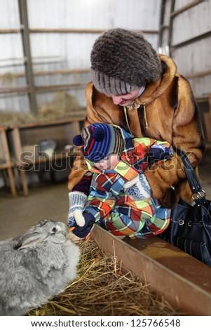 Toddler is feeding rabbit on a farm, Tyumen, Russia - stock photo