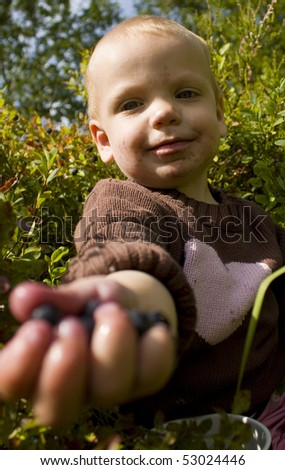 Toddler (one year old) offering you bilberries (european blueberries). - stock photo