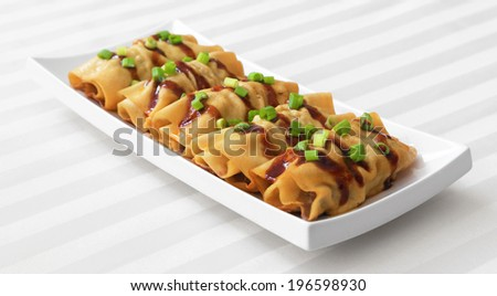 Tofu Rolls - Homemade tofu rolls garnished with green onions and sauce. - stock photo
