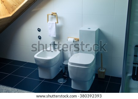 Toilet and Bidet in a Modern Bathroom, close up
